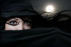 2011 Arabian Nights Show