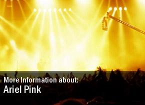 Ariel Pink Los Angeles CA