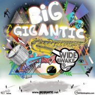 Big Gigantic Tickets