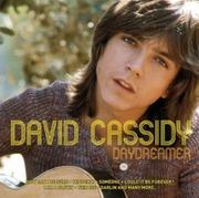 Concert David Cassidy