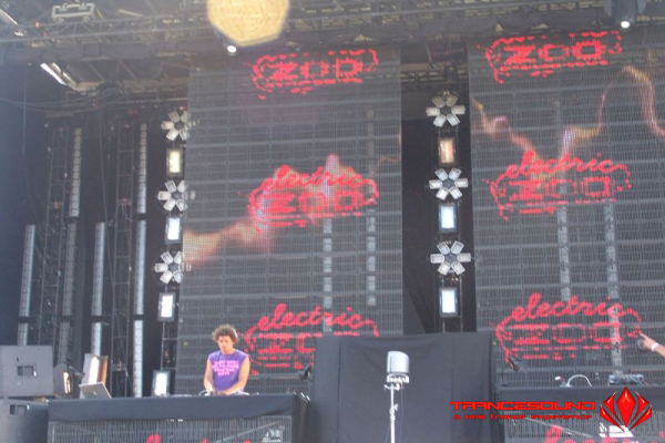 Concert Electric Zoo Festival