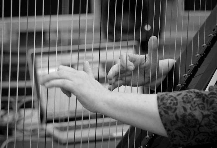Harp Concerto Premiere Tickets Devos Hall
