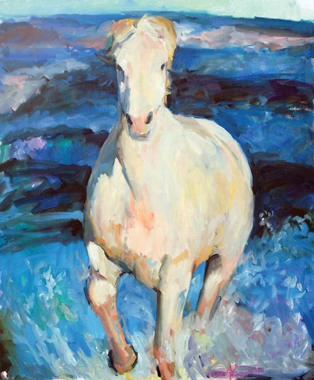 Horse In The Sea Minneapolis MN
