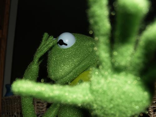 Kermit Reno NV