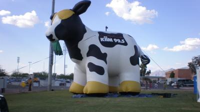 Kiim Country Music Festival 2011
