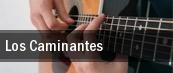 Dates 2011 Los Rayos Gamma