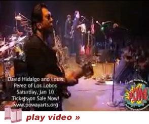 Louie Perez Concert