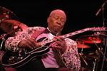 Louisville Blues Festival Concert