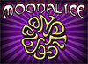 Moonalice Mexicali Live