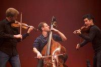 Muncie Symphony Orchestra Tickets Show