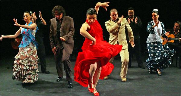 Show Noche Flamenca 2011