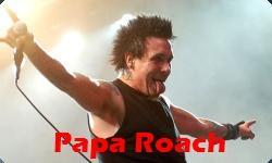 2011 Papa Roach Show
