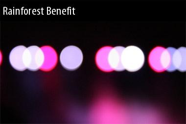 2011 Tour Dates Rainforest Benefit