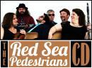 Red Sea Pedestrians Ann Arbor