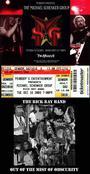 Ricky Ray Concert