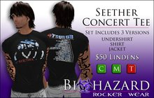 Seether Concert