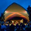 2011 St Louis Blues Festival