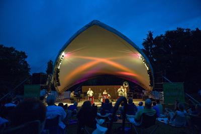 St Louis Blues Festival Concert