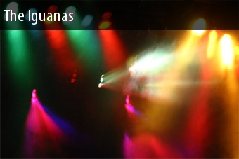 Tickets The Iguanas