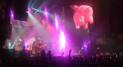 Concert The Pink Floyd Experience