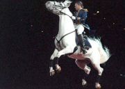World Famous Lipizzaner Stallions 2011 Dates