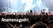 Anamanaguchi Mr Small's Fun House tickets