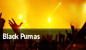 Black Pumas Covington tickets
