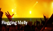 Flogging Molly Houston tickets