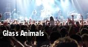 Glass Animals Houston tickets