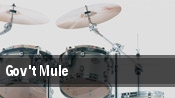 Gov't Mule Northampton tickets