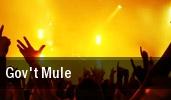 Gov't Mule Warfield tickets