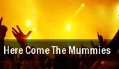 Here Come The Mummies Cincinnati tickets