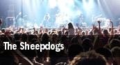 The Sheepdogs Juan de Fuca Recreation Centre tickets