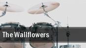 The Wallflowers Bridgestone Arena tickets
