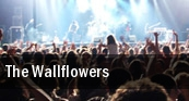 The Wallflowers Tampa tickets