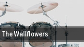 The Wallflowers Workplay Theatre tickets