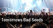 Tomorrow's Bad Seeds Denver tickets