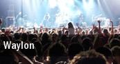Waylon Paradiso tickets