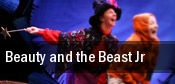 Beauty and the Beast Jr Sarofim Hall tickets