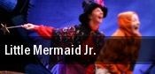Little Mermaid Jr. Albuquerque tickets
