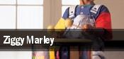Ziggy Marley Ventura tickets