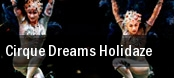 Cirque Dreams Holidaze: A New Wonderland Mesa Arts Center tickets