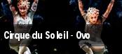 Cirque du Soleil - Ovo Miami tickets