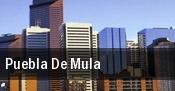 Puebla De Mula tickets