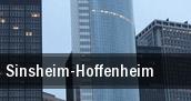 Sinsheim-Hoffenheim tickets