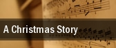 A Christmas Story The Bardavon 1869 Opera House tickets