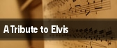 A Tribute to Elvis Toledo tickets