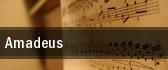 Amadeus tickets
