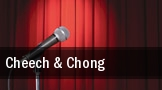 Cheech & Chong Verizon Theatre at Grand Prairie tickets