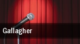 Gallagher Celebrity Theatre tickets